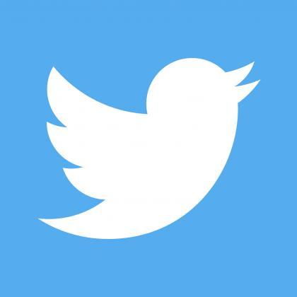 Twitter logo artwork